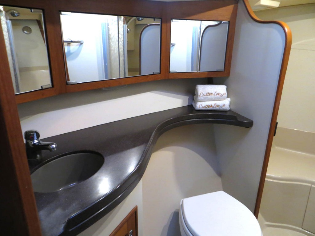 forward head mirrored vanity