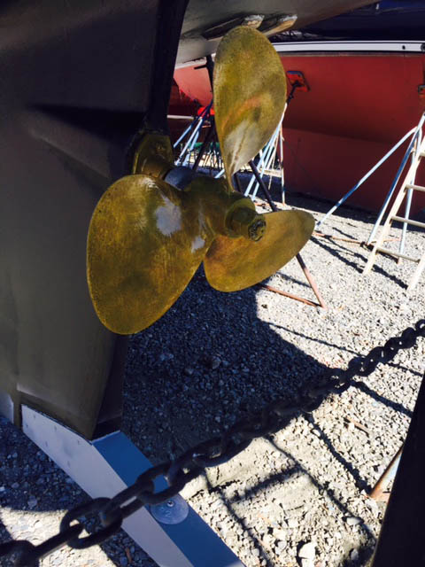 standard 3-bladed prop protected by aluminum rudder foot below